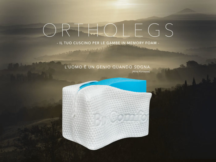 Ortholegs Memory